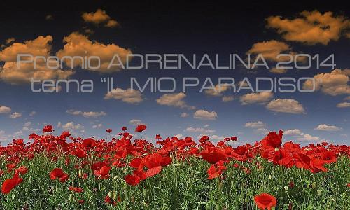 Premio-Adrenalina-cercabando