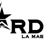 Stardust - Bando per Artisti